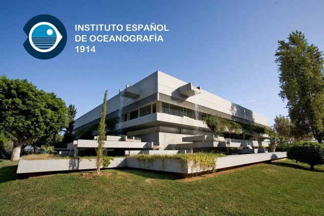 Central IEO